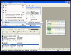 rpt inspector screenshot-1