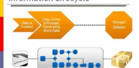 Information and Data Lifecycles - INTRICITY