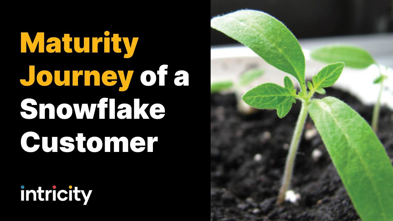 Maturity Journey of a Snowflake Customer