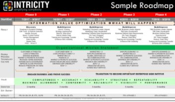 CASE STUDY: Enterprise Data and Business Process Strategy
